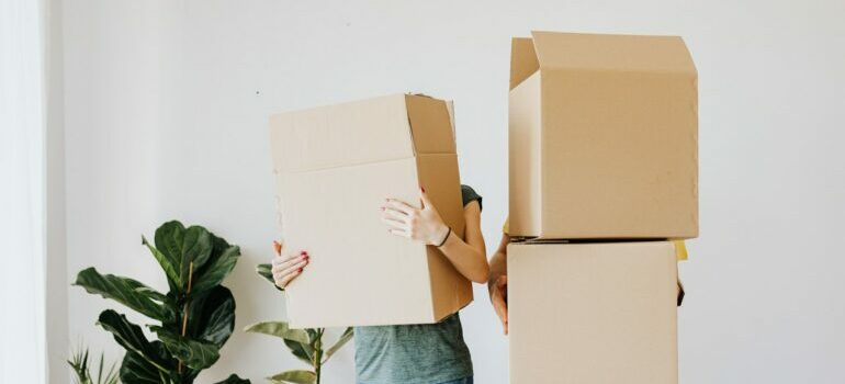 two people with cardboard boxes over their heads
