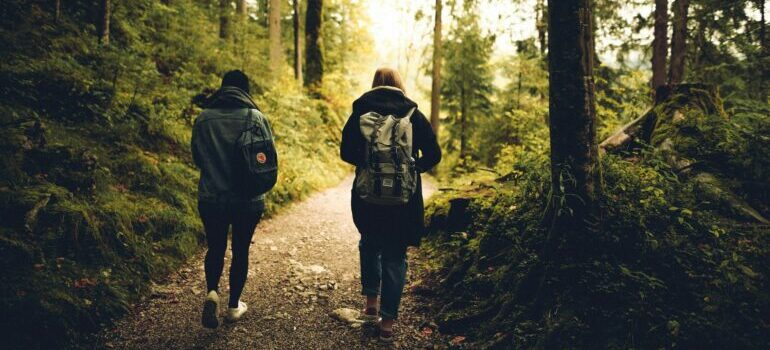 Two people walking in the forest.