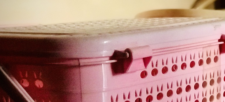 A plastic bin as a part of packing with plastic storage bins guide